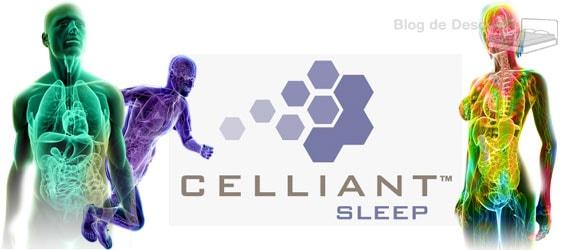 Colchones viscoelastica con tecnología Celliant