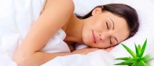 almohadas viscoelasticas aloe vera