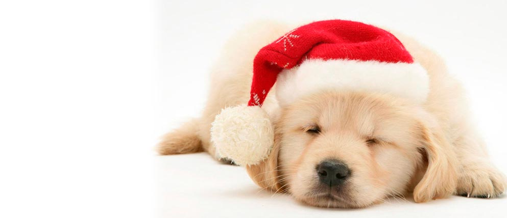 Dormir bien en navidad