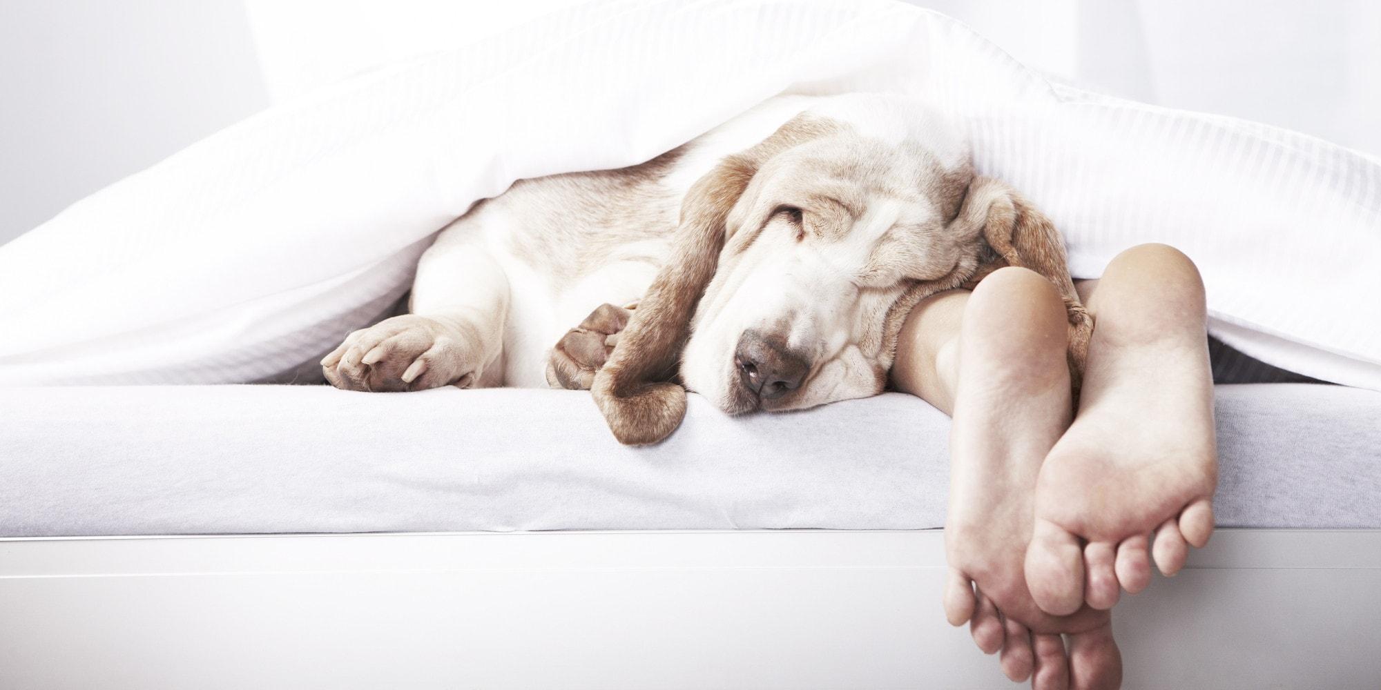 cómo relajarse para dormir