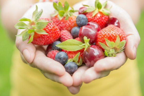 alimentación sana y equilibrada