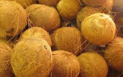 Colchón de fibra de coco para bebés: una gran opción