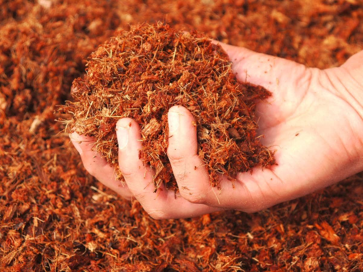 fibras para la fabricación de colchones